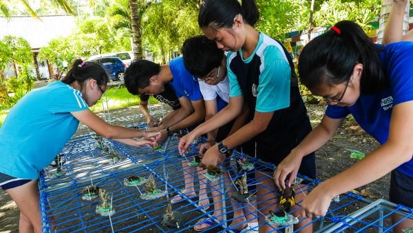 Volunteers making coral table