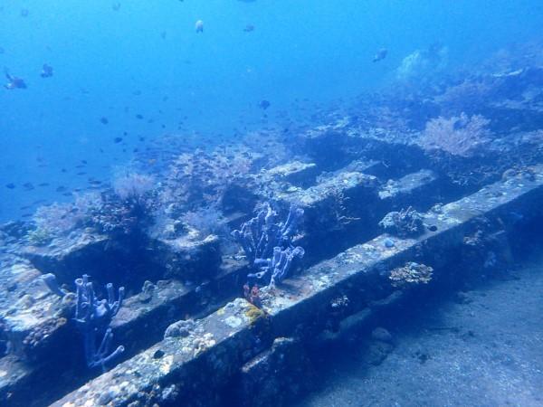 METRO Artificial Reef Les Village