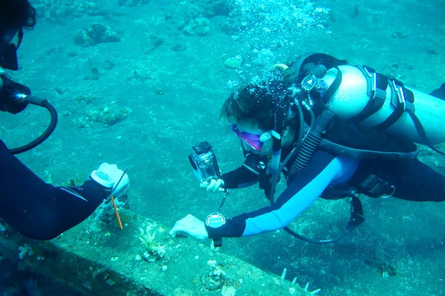 Dive volunteers surveying