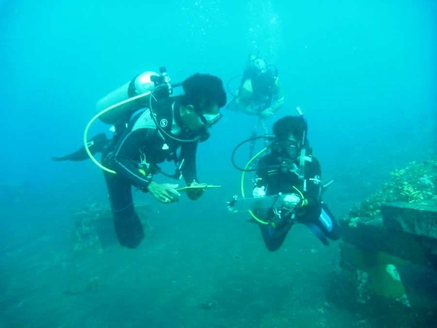Dive volunteer underwater survey