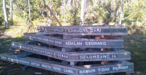 coral reef rebuilding bali indonesia kycmaerxthaere eames demetrios