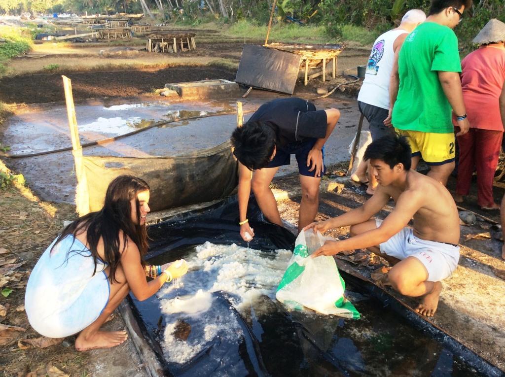 Volunteers salt farming
